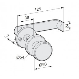 22256 - lever handle with...